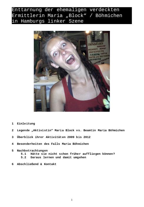 Veröffentlichung als PDF